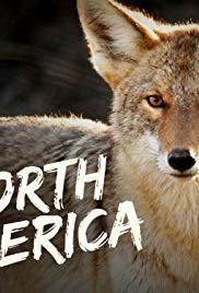 Watch Free North America (2013 )