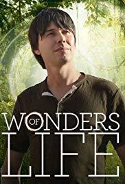 Watch Free Wonders of Life (2013 )