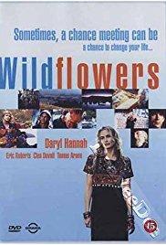 Watch Free Wildflowers (1999)