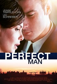 Watch Free A Perfect Man (2013)