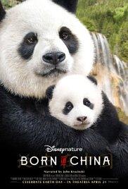 Watch Free Born in China (2016)